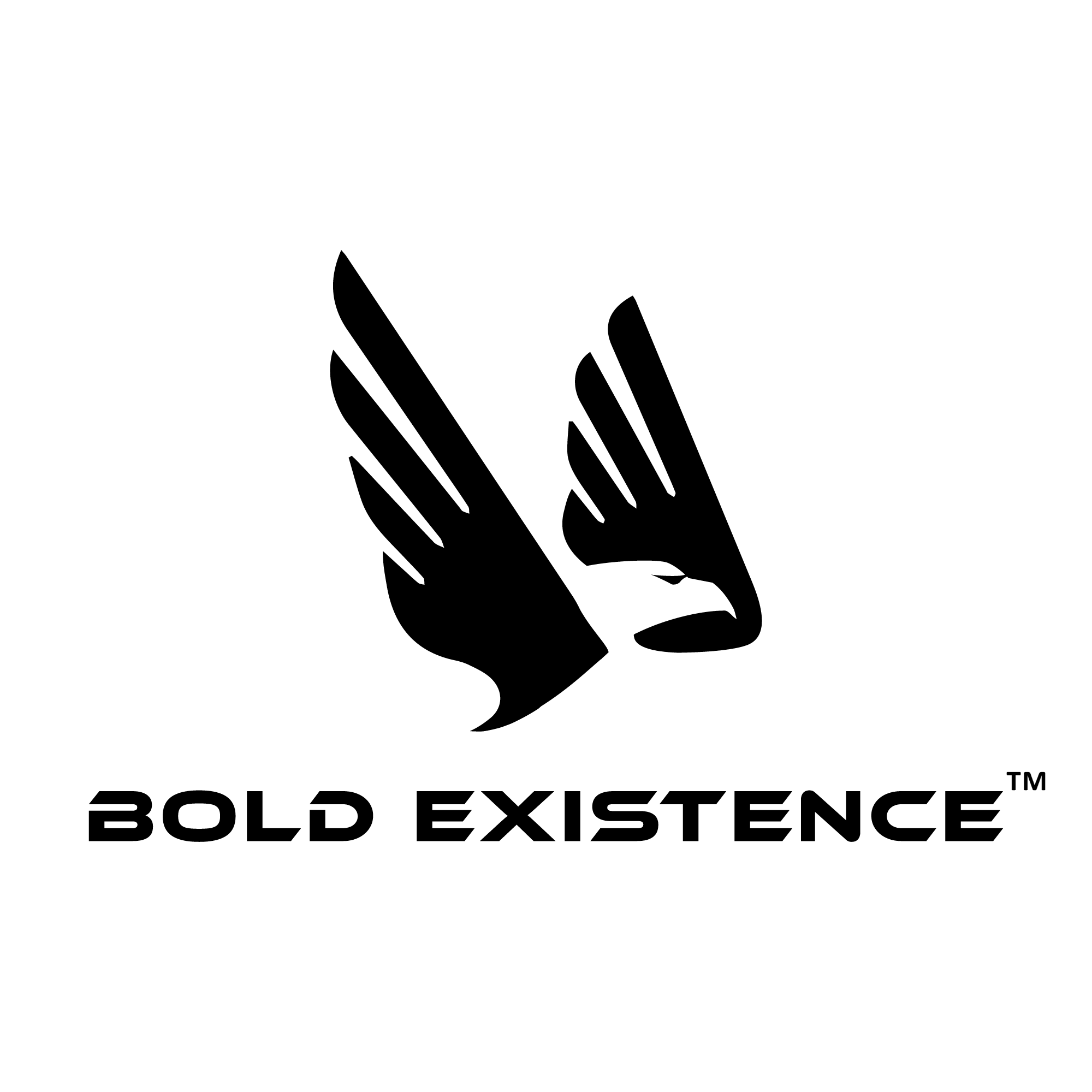BOLD EXISTENCE COURSES